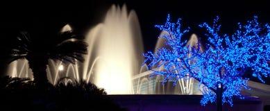 Siluetas de palmas, de fuentes destacadas y del árbol luminoso en Barcelona en noche Foto de archivo