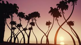 Siluetas de palmeras en la playa del océano sobre fondo de la salida del sol almacen de metraje de vídeo