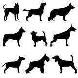 Siluetas de perros Imagen de archivo libre de regalías