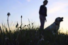Siluetas de un adolescente que camina con su animal doméstico Fotos de archivo