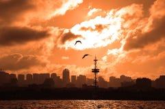 Siluetas de una ciudad en la puesta del sol imagen de archivo libre de regalías