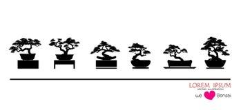 siluetas del ฺBlack de los árboles de los bonsais en potes en la tabla libre illustration