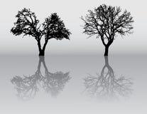 Siluetas del árbol Imágenes de archivo libres de regalías