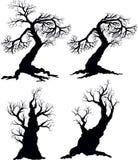 Siluetas del árbol Fotografía de archivo