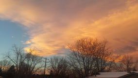 Siluetas del árbol en la puesta del sol de Colorado Imagen de archivo