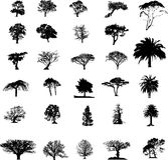 Siluetas del árbol fijadas Fotos de archivo