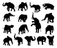 Siluetas del animal del elefante Imagen de archivo