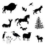 Siluetas del bisonte, oveja, cordero, lince, ardilla, garzas, tragos, ciervos en barbecho, vector del caballo ilustración del vector
