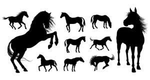 Siluetas del caballo stock de ilustración