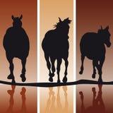Siluetas del caballo Fotografía de archivo libre de regalías