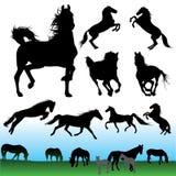 Siluetas del caballo fijadas Imagenes de archivo
