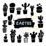 Siluetas del cactus del vector en los potes Sistema dibujado mano de cactus y de succulents libre illustration