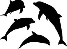 Siluetas del delfín stock de ilustración