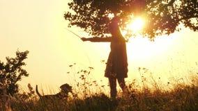 Siluetas del entrenamiento y de jugar de la muchacha con su perro lindo durante puesta del sol que sorprende almacen de video