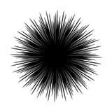 Siluetas del erizo de mar blancos y negros stock de ilustración