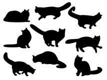 Siluetas del gato Imagen de archivo libre de regalías