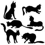 Siluetas del gato Imagenes de archivo