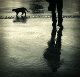 Siluetas del gato y del hombre Foto de archivo