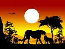 Siluetas del guepardo de la belleza con el fondo del paisaje Foto de archivo