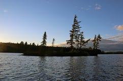 Siluetas del pino en el lago Algonquin Foto de archivo