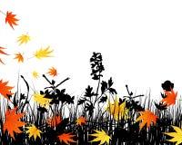 Siluetas del prado del otoño Foto de archivo