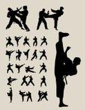 Siluetas del Taekwondo y del karate Imágenes de archivo libres de regalías