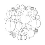 Siluetas del vector de bayas y de frutas Inscripción de imitación Fotografía de archivo libre de regalías