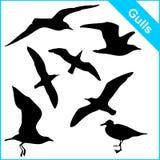 Siluetas del vector de las gaviotas de mar foto de archivo libre de regalías