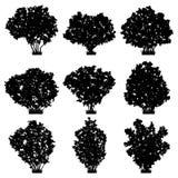 Siluetas del vector de los arbustos Imagen de archivo