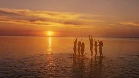 Siluetas del verano de la gente joven feliz que salta en el mar en la playa El estilo retro del vintage con el foco suave y el so metrajes