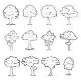 Siluetas grandes del árbol Fotografía de archivo