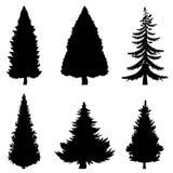 Siluetas negras del vector de 6 árboles de pino en el fondo blanco stock de ilustración