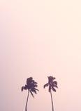 Siluetas retras gemelas de la palmera Foto de archivo libre de regalías