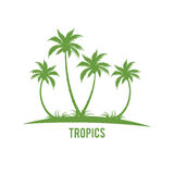 Siluetas tropicales de la isla de las palmeras Imagen de archivo libre de regalías