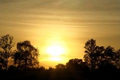 Siluetee el estilo de la vista del sol que va abajo y de los árboles Fotos de archivo libres de regalías