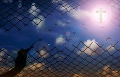 Siluetee la mano con las tijeras que cortan la red con el fondo del cielo, f Imágenes de archivo libres de regalías