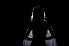 Siluetee la sombra de la mujer en estilo de pelo de la onda con la red de plata Fotos de archivo libres de regalías