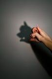Siluetee la sombra del cerdo Imagen de archivo libre de regalías