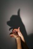 Siluetee la sombra del perro Foto de archivo libre de regalías
