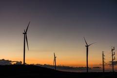 Siluetee las turbinas de los generadores de viento en el paisaje i del verano de la puesta del sol Foto de archivo libre de regalías