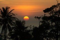Siluetee los árboles en puesta del sol en el mar y el cielo hermoso Fotos de archivo