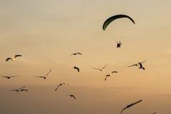 Siluetee Paramotor, paracaídas, vuelo de Paraglide en la puesta del sol Imagenes de archivo