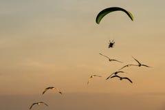 Siluetee Paramotor, paracaídas, vuelo de Paraglide en la puesta del sol Fotografía de archivo