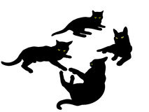 Siluets of cats Royalty Free Stock Photo