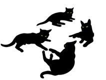 Siluets dei gatti Fotografia Stock Libera da Diritti