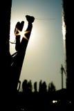 Siluetta Fotografia Stock