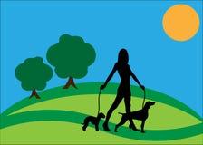 Siluetta ambulante della donna del cane Fotografie Stock Libere da Diritti
