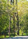 Siluetta arrugginita ad alta tensione del pilone di elettricità e della torre contro fogliame verde Fotografie Stock Libere da Diritti