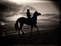 Siluetta in bianco e nero di un uomo che monta un cavallo su una spiaggia sabbiosa sotto un cielo nuvoloso durante il tramonto fotografia stock libera da diritti