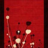 Siluetta dal gambo lungo del fiore del prato su colore rosso Fotografia Stock Libera da Diritti